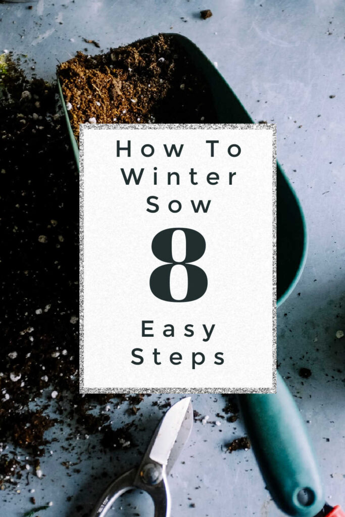 How to winter sow 8 easy step tutorial from daysforlearning.com